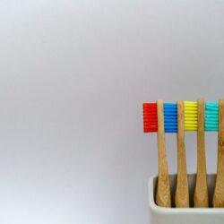 vegan bamboo toothbrushes